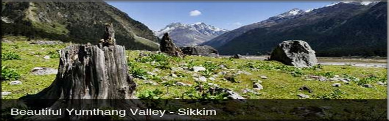 visit yumthang valley