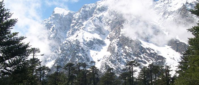 lachung-valley-image